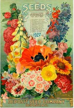 flower seed packet1